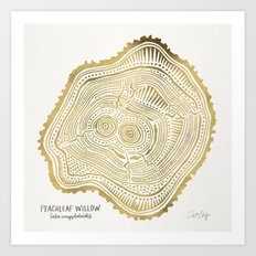 Peachleaf Willow – Gold Tree Rings Art Print