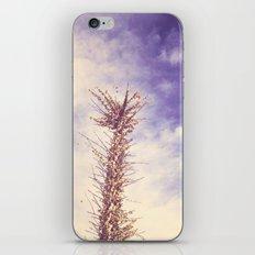 desert llama iPhone & iPod Skin