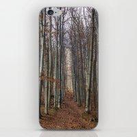 Autumn hike iPhone & iPod Skin