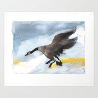 Canada Goose Landing...d… Art Print