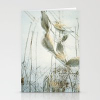 Milk Weed Stationery Cards