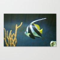 Banner  Fish Canvas Print