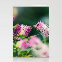 Summer Delight Stationery Cards