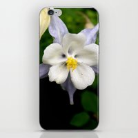 Colorado Columbine 2 iPhone & iPod Skin