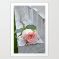 Love On The Fence Art Print