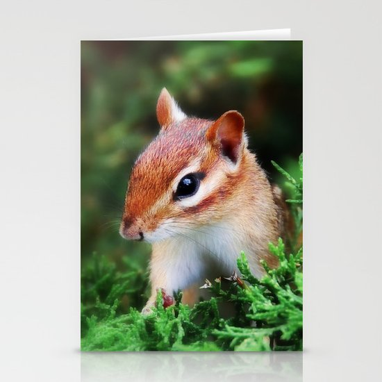 Chipmunk Stationery Card