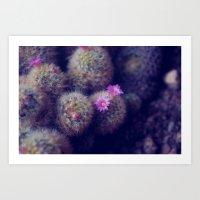 Little Cactus Flowers Art Print