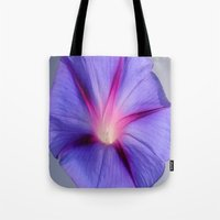 Close Up of A Morning Glory Purple and Pink Flower Tote Bag