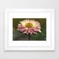 Sidelong Glance Framed Art Print