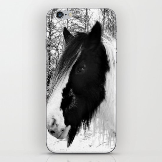 Horse. Black+White.Snow. iPhone & iPod Skin