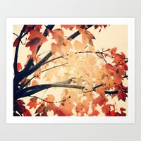 Maple Run Art Print