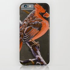 Northern Cardinal Male iPhone 6 Slim Case