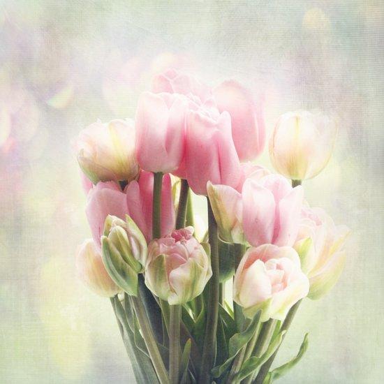 tulip bouquet Art Print