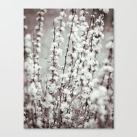 Nature In Black And Whit… Canvas Print