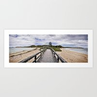 Penquin Island Boardwalk Art Print