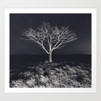 Branching Into The Stars Art Print