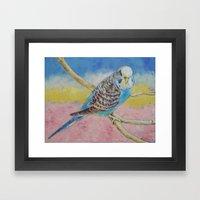 Sky Blue Budgie Framed Art Print