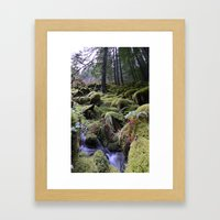 Land of Moss & Water Framed Art Print