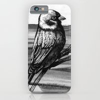iPhone & iPod Case featuring Sparrow by Chuchuligoff