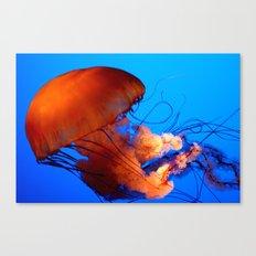 Underwater Dancer Canvas Print