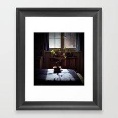 Zen Life Framed Art Print