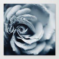 Powder Blue Canvas Print