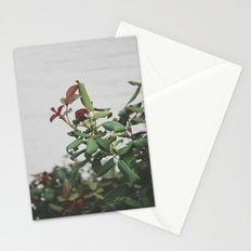 Rose Hips Stationery Cards