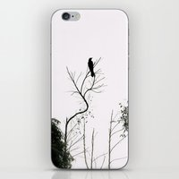 Black Bird iPhone & iPod Skin