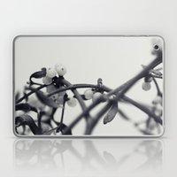 mistletoe... Laptop & iPad Skin