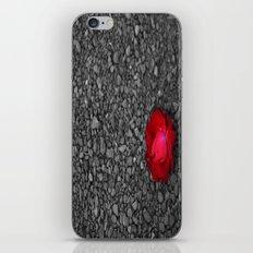 Elegant Simplicity iPhone & iPod Skin