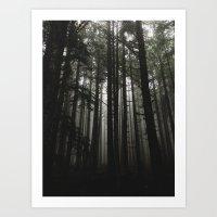 Foggy Trees, Larch Mount… Art Print