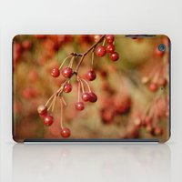 Cranberries iPad Case