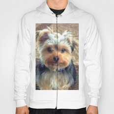 Always Thinking of You... | Yorkie Portrait | Dogs | Hoody