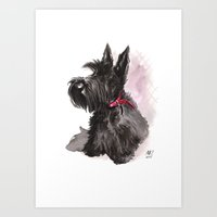 Scottish Terrier Posing Art Print