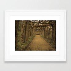 Sepia wood tunnel Framed Art Print