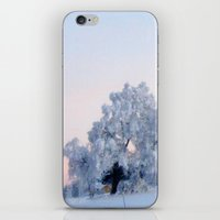 iPhone & iPod Skin featuring A cold day in Paradise by AstridJN