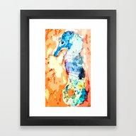 Sea Horse II Framed Art Print