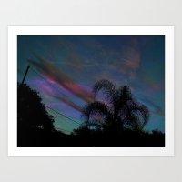 Palm Sun Down Art Print