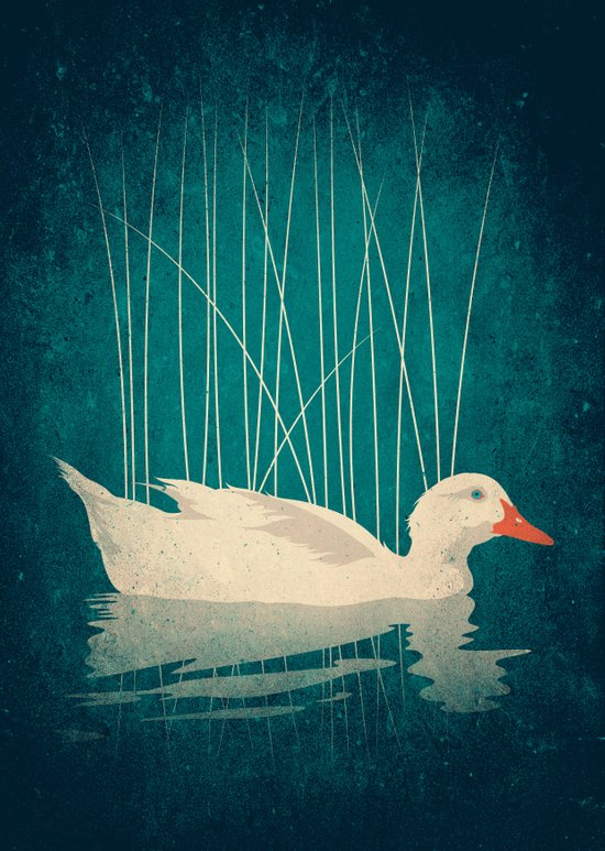 Duck Reflected Canvas Print