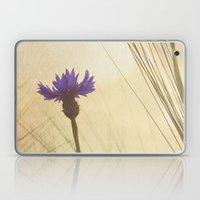 FLOWER Bluebottle Laptop & iPad Skin