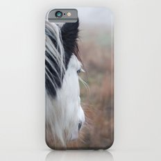 Profile of a Black and White Horse iPhone 6s Slim Case