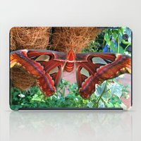 Butterfly 1 iPad Case