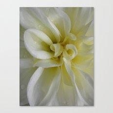 Nature's Dance in White Canvas Print