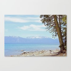 Tree by the lake Canvas Print
