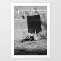 The cat and the pants Art Print