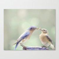 Spring Kiss Canvas Print