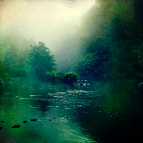 at the river Art Print