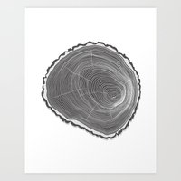 Tree Ring Art Print