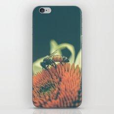 Summer Dance iPhone & iPod Skin