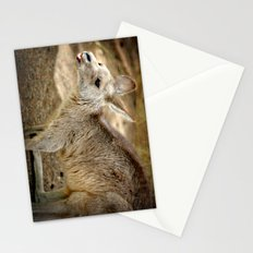 Razzie Kangaroo Stationery Cards